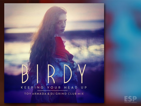 Birdy keeping your head up toy armada dj grind club mix